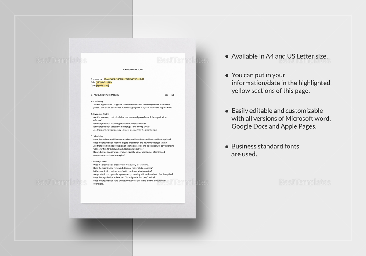 Management Audit Checklist Template In Word Docs