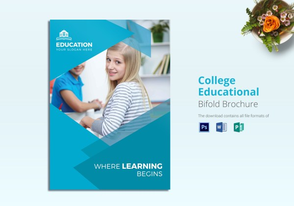 College Educational Brochure Design Template In Word Psd