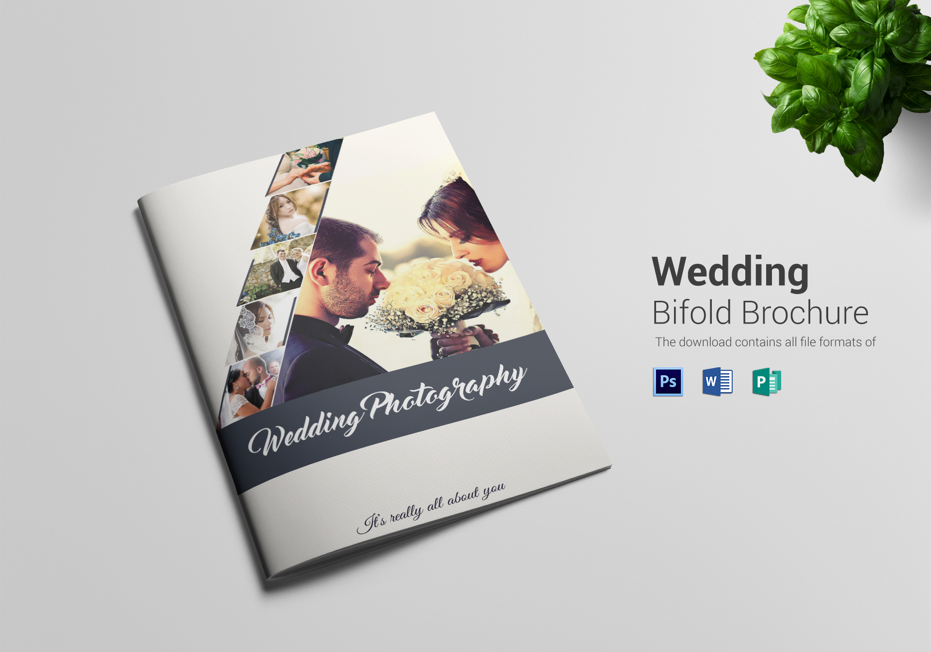 Wedding Brochures Samples Ideal Vistalist Co