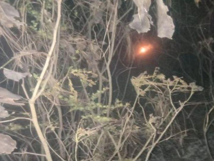 कांगड़ा में जंगल में लगी आग। - Dainik Bhaskar