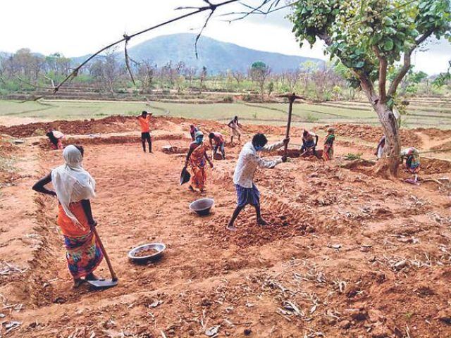 Not a single villager had a positive report.  - Dainik Bhaskar