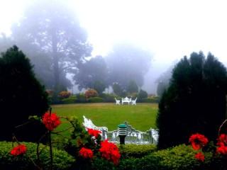 MP के HILL STATION की फोटो स्टोरी: पहाड़ों की रानी पचमढ़ी की खूबसूरती इन 7 तस्वीरों में देखें, सर्दी का लुत्फ उठाने पहुंच रहे हैं पर्यटक