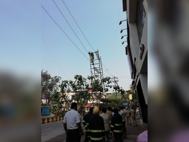 After the incident, the staff of the electricity department reached the spot, removing the ladder.