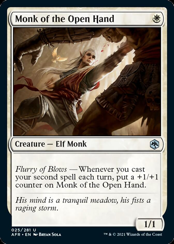 Monk of the Open Hand