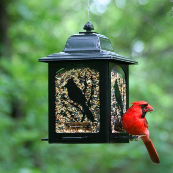 Perky-pet Birds & Berries Lantern Feeder Model #363