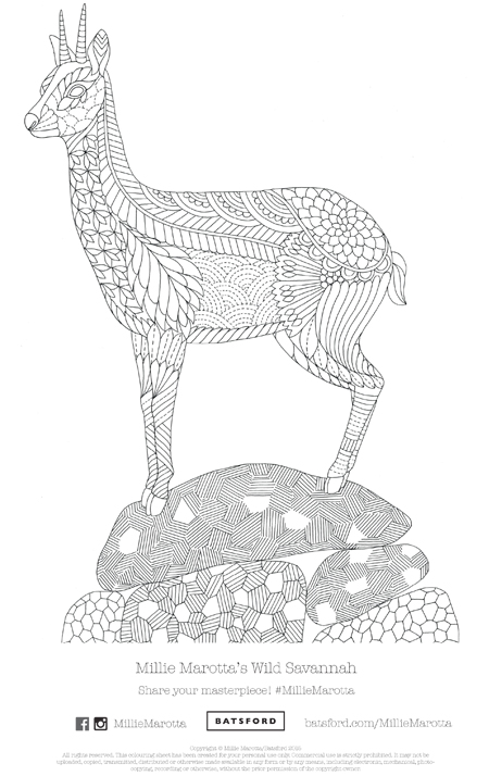 Millie Marotta's Wild Savannah Free Pattern Download
