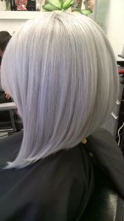 formula modern silver - hair color