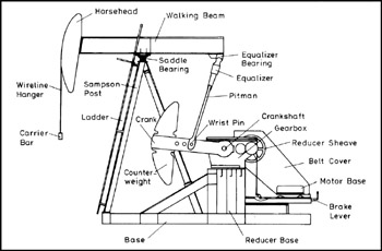 monoblock wiring diagram of foot muscles and tendons pumping units | engineering360