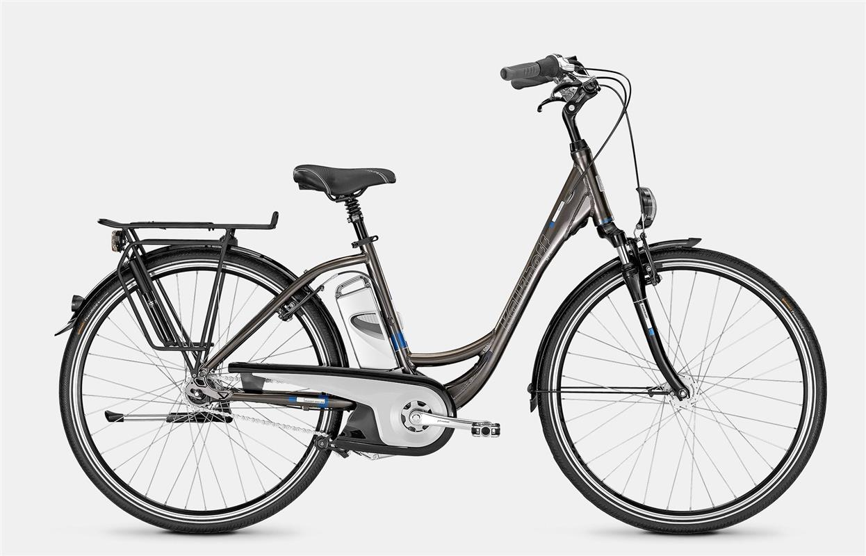 Electric Bike Large Frame