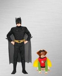 The Boy Wonder Robin Costumes | BuyCostumes.com