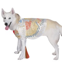 Elvis Dog Costume | BuyCostumes.com