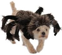 Tarantula Dog Costume | BuyCostumes.com