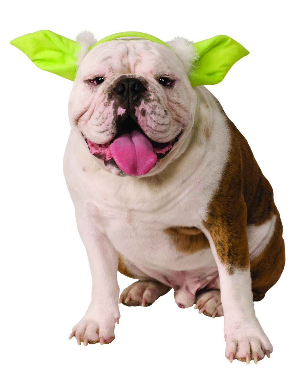 Yoda Dog Headpiece
