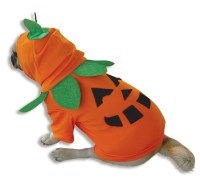 Pumpkin Pooch Dog Costume | BuyCostumes.com