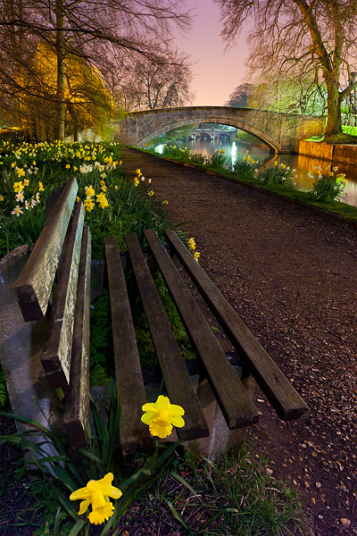 https://i0.wp.com/images.cambridgeincolour.com/cambridge/FlowerBench.jpg