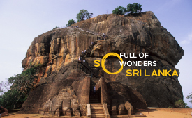 %7B029368b2-7805-40a2-a3ff-26fa7430d8f6%7D_Sri_Lanka_Third_Party_Email_Content_Block_2_image.jpg