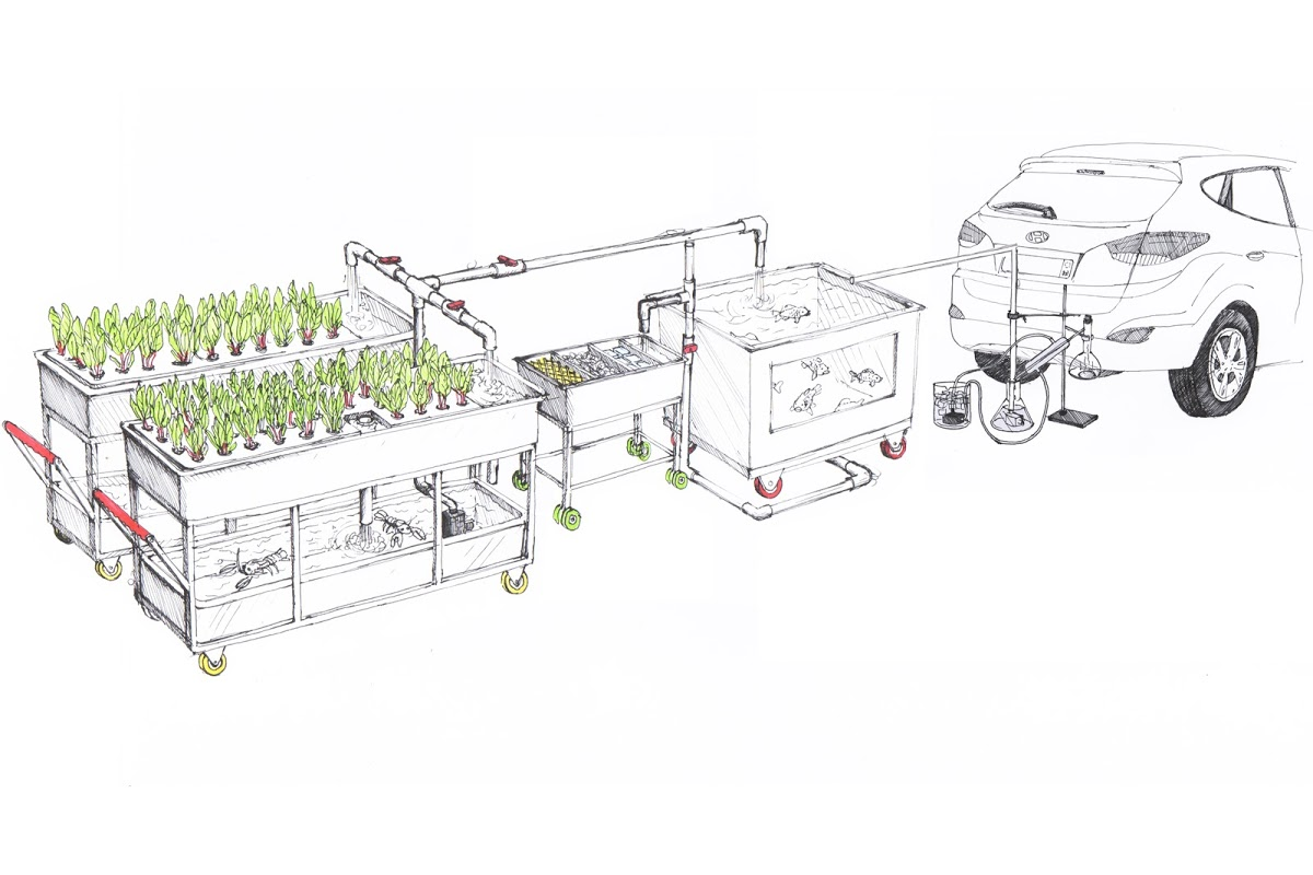 Hyundai To Reveal Fully Functioning Fuel Cell Farm