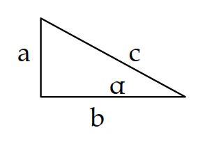 Nel triangolo rettangolo sono vere le affermazioni