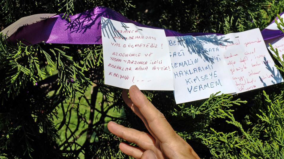 Naiset ovat kirjoittaneet toiveitaan tasa-arvoon liittyen puistossa olevaan puuhun.