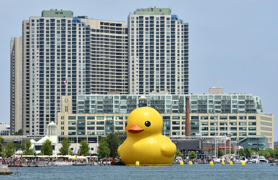 19-metrinen kumiankka juhlisti Kanadan itsenäisyyttä Toronton satamassa 1. heinäkuuta.