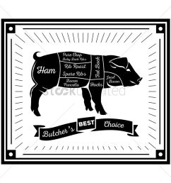 butcher pig cuts diagram vector graphic [ 1300 x 1300 Pixel ]
