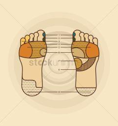foot massage diagram vector graphic [ 1300 x 1300 Pixel ]
