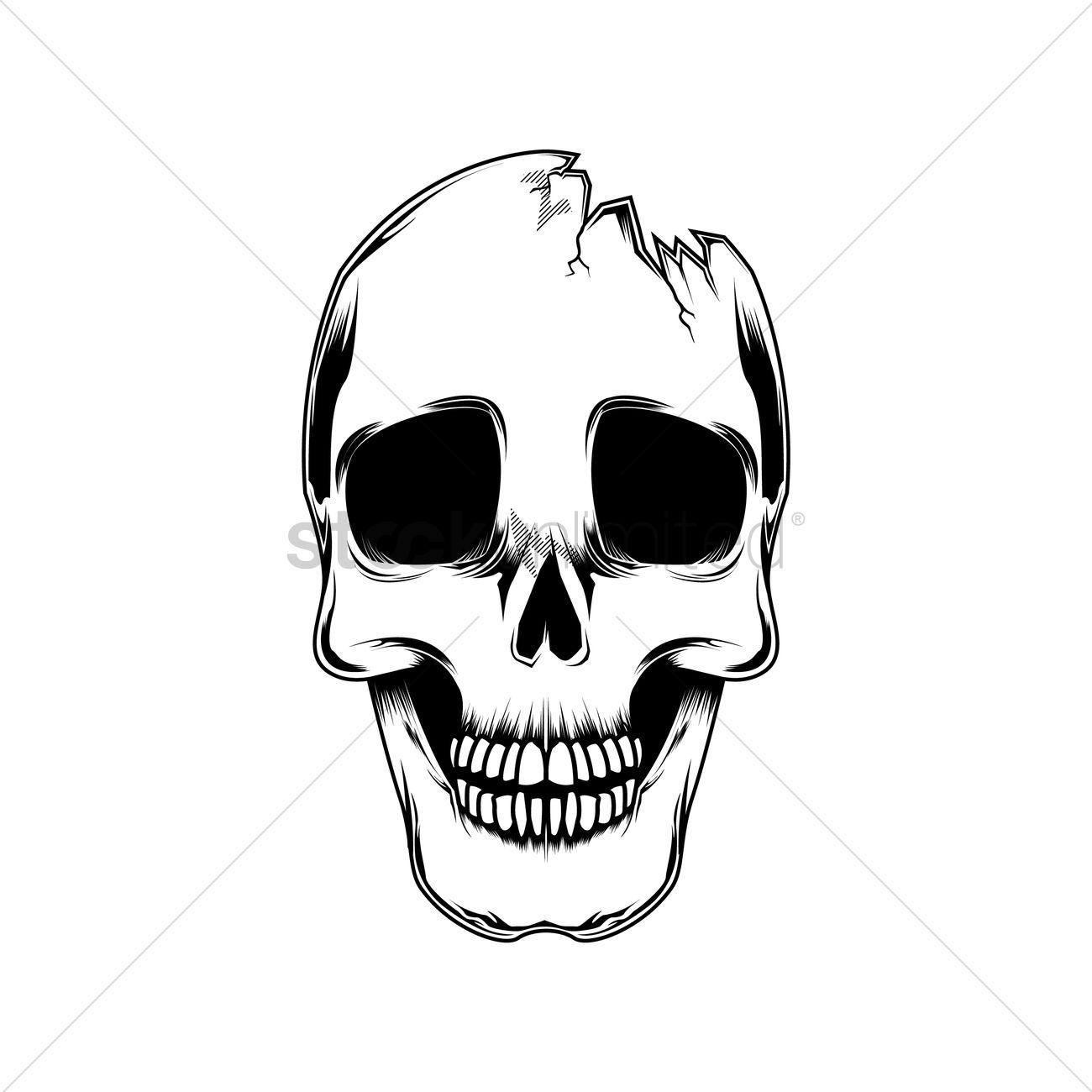 Broken Skull Vector Image