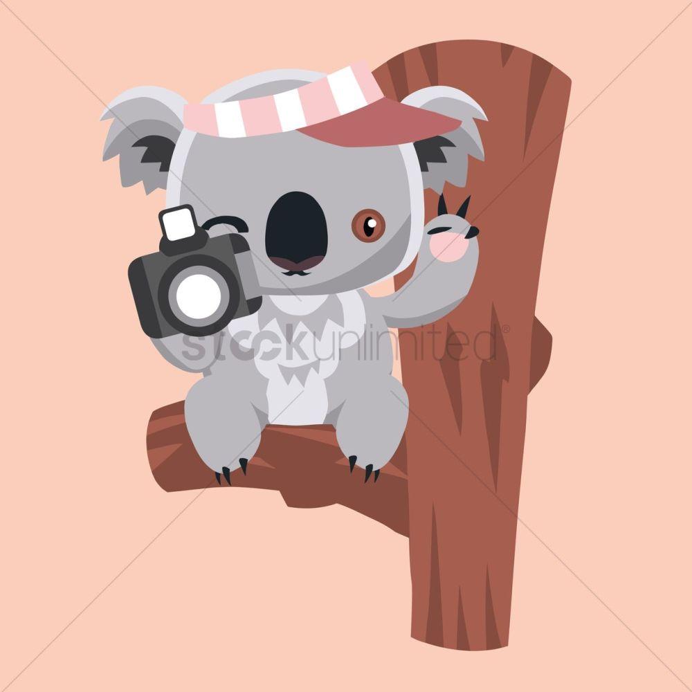 medium resolution of free koala bear holding a camera vector graphic