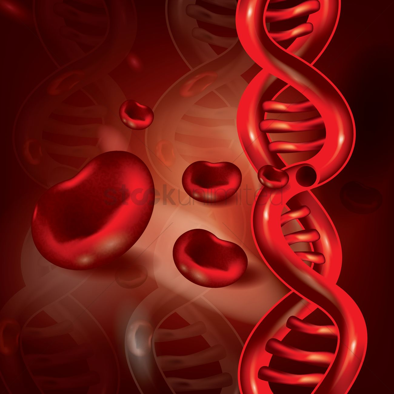 Red Blood Cells And Dna Vector Image
