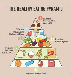 the healthy eating pyramid design vector image 1976093 healthy eating photographs diagram of healthy eating [ 1300 x 1300 Pixel ]
