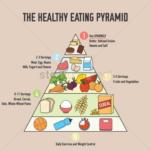 small resolution of the healthy eating pyramid design vector image 1976093 healthy eating photographs diagram of healthy eating