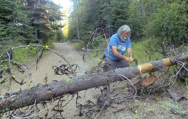 Chopping through the tree.
