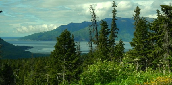 I took this picture as Judy and I drove away from our camp near Hope. It's looking north toward Anchorage which is hidden just around the corner of the furthest left point.