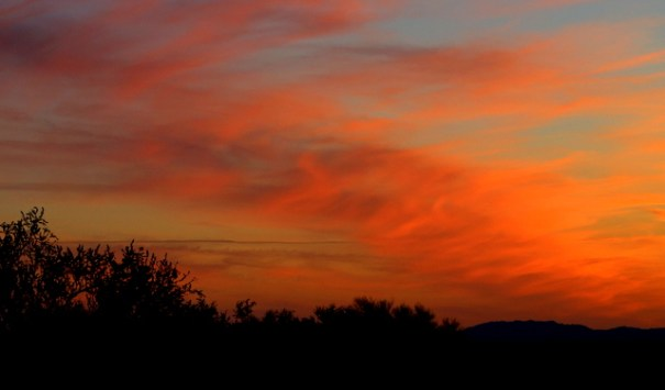What I always miss most about the Arizona desert is the non-stop spectacular sunsets!