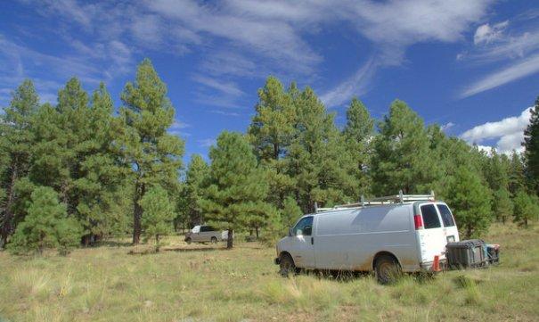 Coconino NF, Flagstaff, Arizona