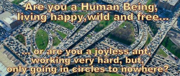 traffic-jam-640