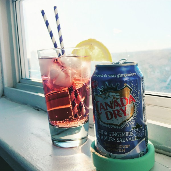 20 Blackberry Canada Dry Ginger Ale Pictures And Ideas On Meta Networks