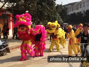 lion dances at chinese