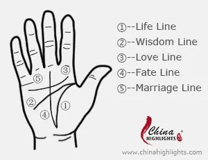palmistry diagram marriage line electrical home wiring diagrams reading lines on hands palm guide basics of hand to how easily read the know one s fate