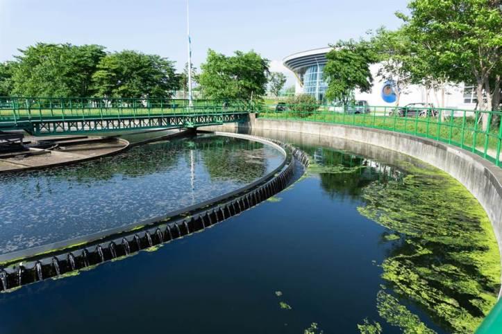 原本家庭汙水處理後便直接排入鳳山溪,如今透過「再生水廠」過濾,可生產純淨優質的工業用水。(袁庭堯攝)