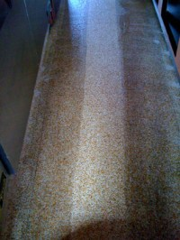 Extreme Carpet Care in Chula Vista, CA 91911