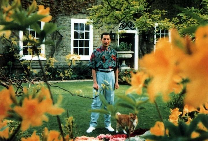 La última foto de Freddie Mercury, con un visible deterioro provocado por la enfermedad, pero con una dignidad imbatible.