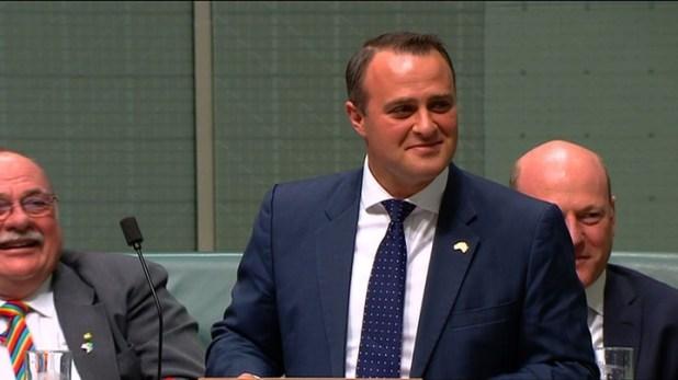 Australia: un diputado pide la mano a su novio durante un discurso en el Parlamento