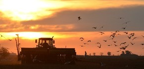 News Harvest | The highlight of the agro-industry and the regional economies.