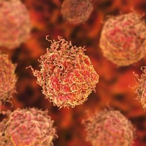 Un descubrimiento inmunológico podría servir para tratar numerosos tipos de cáncer