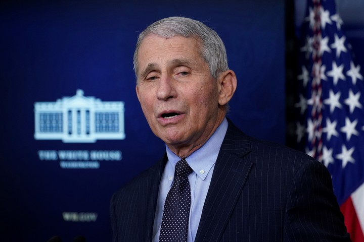 Fauci said critics had taken the email out of context.  Photo: AP