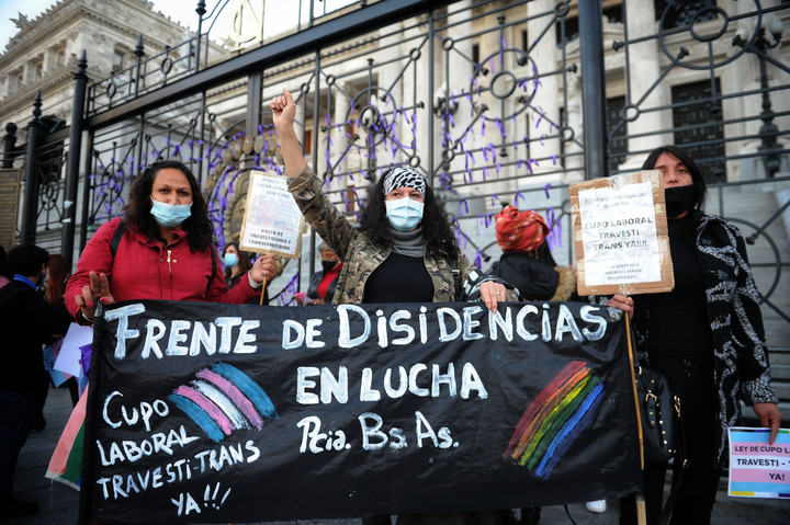 Representatives of the transvestite - trans groups went to Congress.  Photo: Juano Tesone