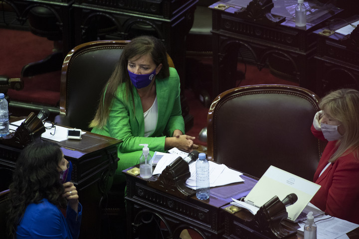 Gabriela Cerruti in Congress.  A short chicana at the right time against the opposition.  Photo Rolando Andrade Stracuzzi