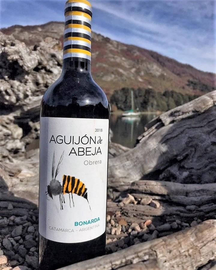 Worker Bee Stinger, Bonarda de Catamarca.