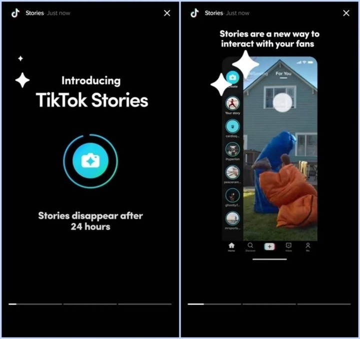 Stories could make it to TikTok.